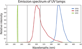 uv l short and long wavelength fig 2 emission spectrum of the di ff erent uv ls uva uvb and