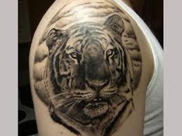 25 stunning tiger designs slodive inside amazing