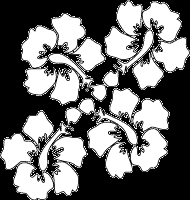 tropical hibiscus flowers coloring page