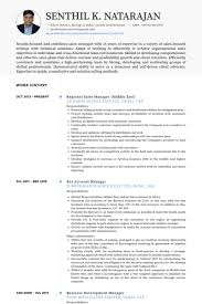 Technical Recruiter Resume Sample by Regional Sales Manager Resume Samples Visualcv Resume Samples