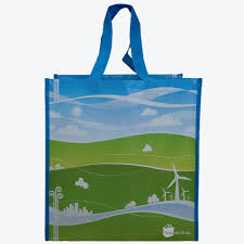 color reusable bags 1 bag at a time
