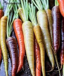 cuisiner les l馮umes anciens gastronomie découvrir et cuisiner les légumes anciens