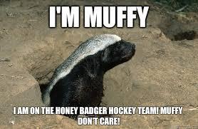 Honey Badger Memes - funny for badger memes funny www funnyton com