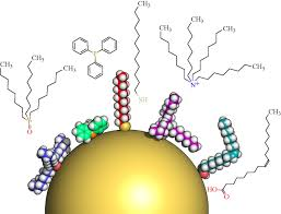 surface modification functionalization and bioconjugation of
