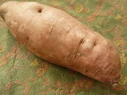 A Root Vegetable - root vegetables 101 a primer on the most underappreciated produce