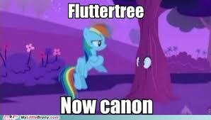 Brony Memes - image my little brony meme comic fluttertree now canon jpg my