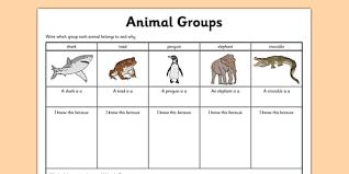 animal groups worksheet animals living things classifying