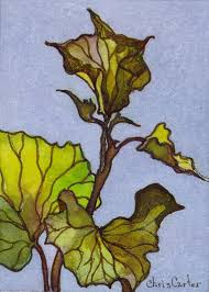 aceo cards for sale sweet potato vine aceo artist trading cards ink watercolor chris