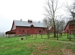 Bargain Barn Willow Springs Nc 308 Best North Carolina Images On Pinterest North Carolina