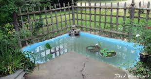 backyard concrete pond