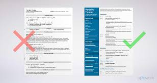 chef resumes exles chef resume sle complete guide 20 exles