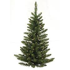 trees with free shipping 5 ft sears