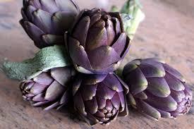 cuisiner les artichauts violets vidéo préparer des artichauts poivrade à la cuisson