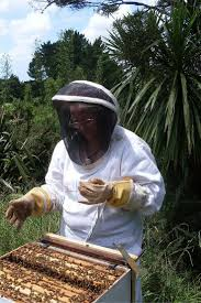 167 best beekeeping best practices images on pinterest bee
