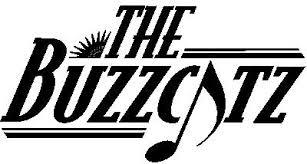 the wedding band the buzzcatz orlando wedding band