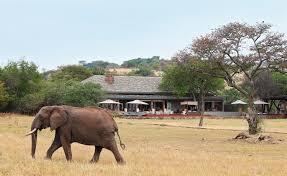 serengeti house grumeti serengeti singita