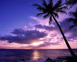 tropical beach sunset images reverse search filename tropical beach sunset wallpaper 3 jpg