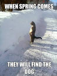 Funny Snow Meme - 16 funny memes about spring