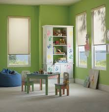 Roller Shade Houston Tx Window Shades Motorized Roman Roller Shade