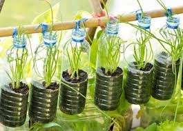 Bottle Garden Ideas 27 Unique Vertical Gardening Ideas With Images Planted Well