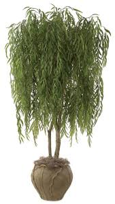 retardant weeping willow planters unlimted