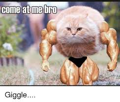 Come At Me Meme - come at me bro gome aume urd giggle meme on esmemes com