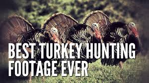 funny thanksgiving jokes best turkey hunting footage ever youtube
