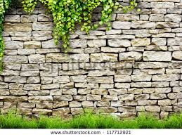 garden wall stock images royalty free images u0026 vectors shutterstock