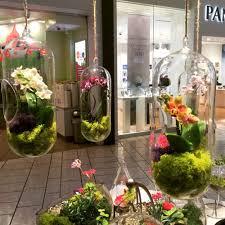 Indoor Plants Arrangement Ideas by Indoor Plant Ideas Reviews Online Shopping Indoor Plant Ideas