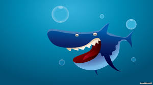 wallpaper shark funny cartoon hd picture image u2022 onedslr