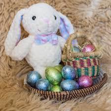 bunny basket the senegal bunny basket expedition subsahara