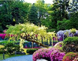 beautiful garden pictures home plans