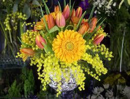 Flower Shops In Surprise Az - flower shops in surprise az beautiful flower 2017 sheilahight