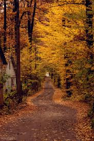 autumn outdoors pinterest autumn paths and leaves