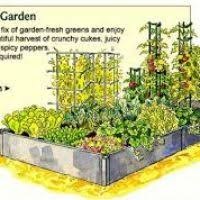 vegetable garden layout ideas halflifetr info