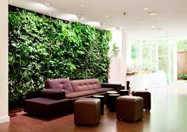 living room living wall planter coleus new guinea impatiens