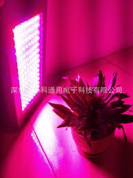 best light for plants best 120w 300w full spectrum led grow lights high power led plant