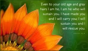 30 healing bible verses comfort renew encouraging