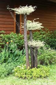 Garden Landscaping Ideas For Small Gardens Cheap Garden Ideas Small Gardens Size Of Garden Landscape