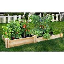 wooden garden trellis vegetable gardening plant wood fence
