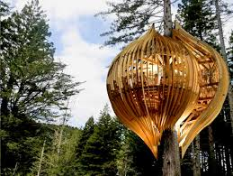new zealand s whimsical yellow treehouse restaurant towers above