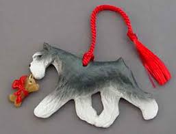 talking dogs at for of a schnauzer jewelry and