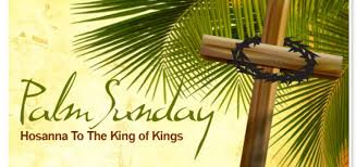 palm for palm sunday scripture reflection palm sunday of the of the lord