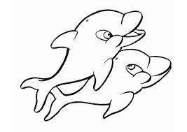 dolphin template animal templates free u0026 premium templates