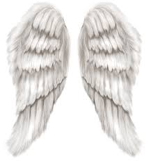 halloween angel wings white angel wings transparent png clip art image gallery