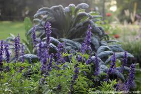 creative vegetable gardener adding beauty to your garden with