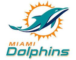 Miami Dolphins Rug Miami Dolphins Etsy