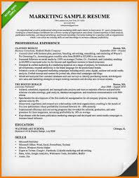 Best Marketing Resumes by 6 Best Marketing Cvs Postal Carrier