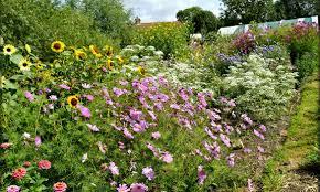 garden design garden design with garden flowers