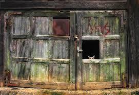 Barn Doors Photography Definition Cat Barn Door Green Bronze Gate Nice Country Cat Wallpaper For